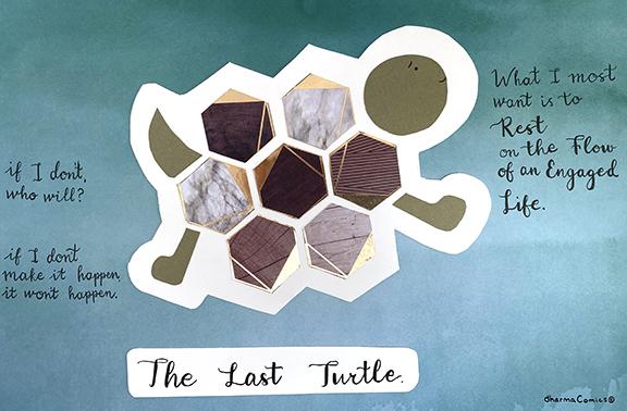 Collage illustration of Last Turtle.